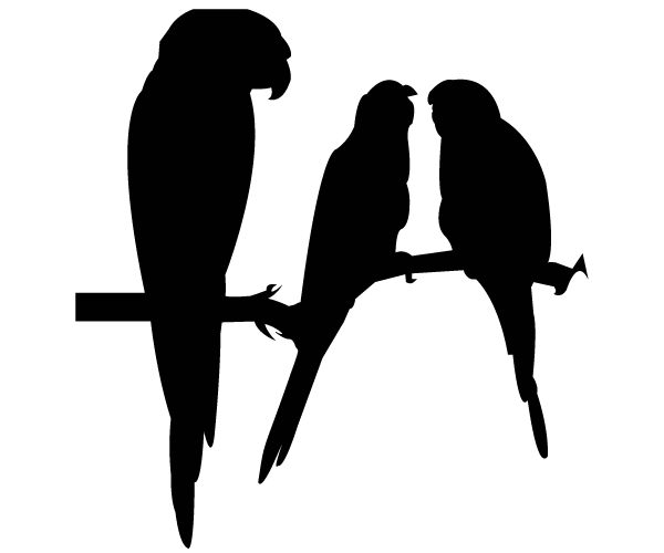 Parrot Silhouettes Vector