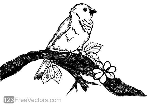 Cute Bird on Tree Branch Vector Art