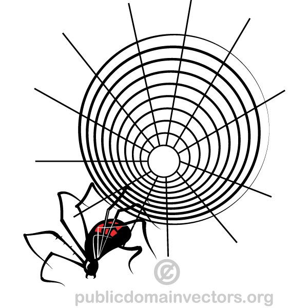 Spider Web Vector Graphics