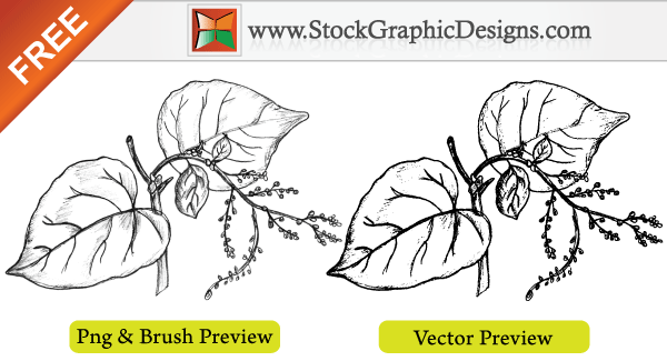 Sketchy Plant Free Vector Illustration
