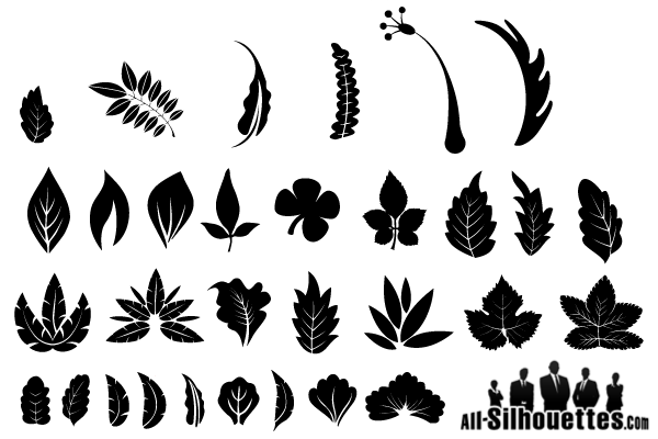 Vector Leaf Silhouette Free Graphics