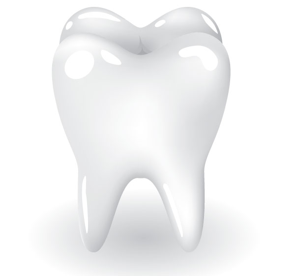 Free Tooth Vector Art