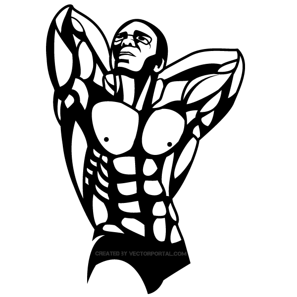 Bodybuilder Vector Graphics
